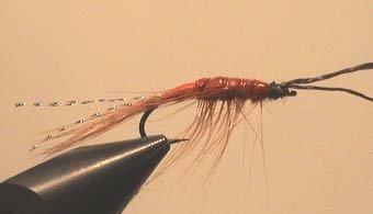 Attraktor Sea-Shrimp Gr.8