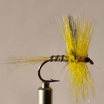 No.21 Yellow May Dun in Größe 12
