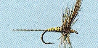 No.12 Sepia Dun in Größe 16