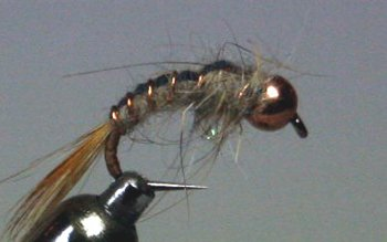 Tungsten BL Nymph Hares Ear