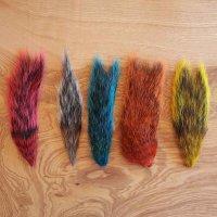 Eichhörnchen Schwänze Mix Squirrel Tails