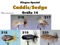 Köcherfliegen Caddis Sedge