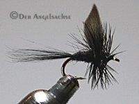 Black Gnad Größe 16 Nr.309/1