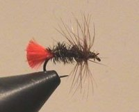AS Dry Fly Red Tag Gr.18