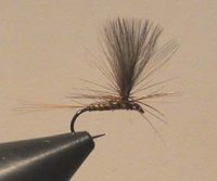 AS Dry Fly No.39 Gr.18